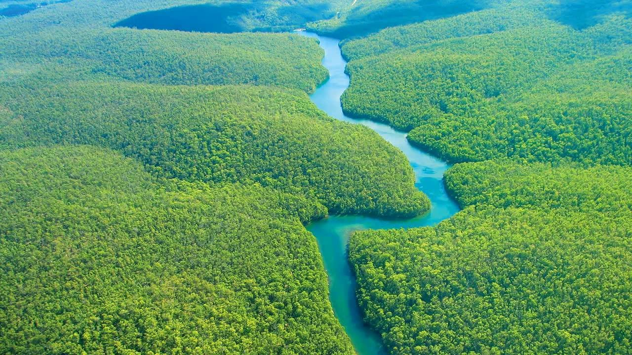 Some curiosities about the Amazon basinbout