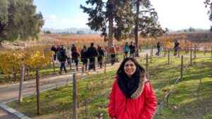 Maipo Valley Wineries